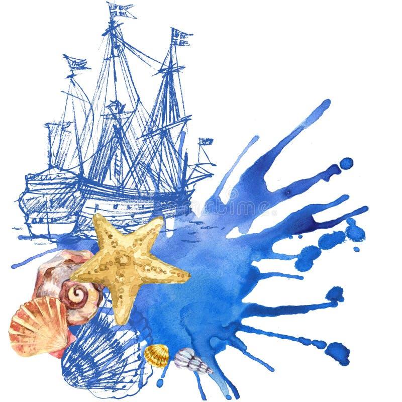 tła zamknięci inkasowi seashell seashells inkasowy ilustracja wektor