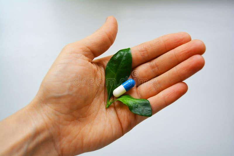 tła ziołowy odosobniony odżywczy pigułek nadprograma biel fotografia stock