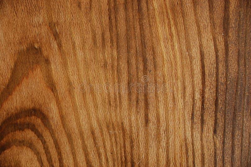 tło 8 drewna obraz royalty free