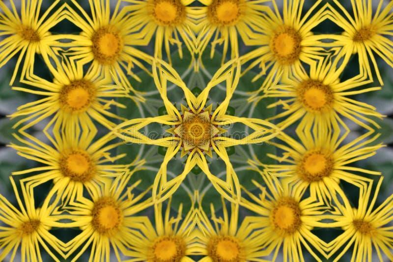 tło abstrakcjonistyczny kalejdoskop Piękna multicolor kalejdoskop tekstura Unikalny i nie do podrobienia projekt Geometryczny sym fotografia stock
