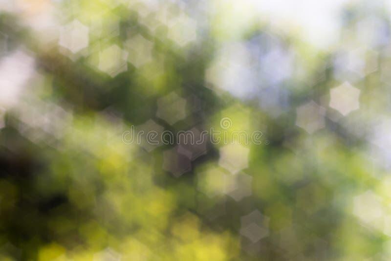 tło abstrakcyjna natura fotografia royalty free