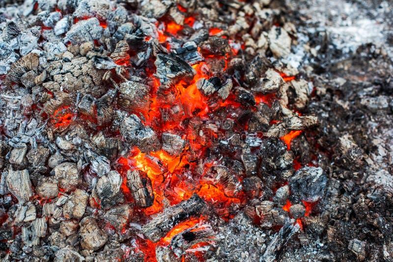 Tło aktywnie tli się jarzyć się węgle ogień i embers fotografia royalty free