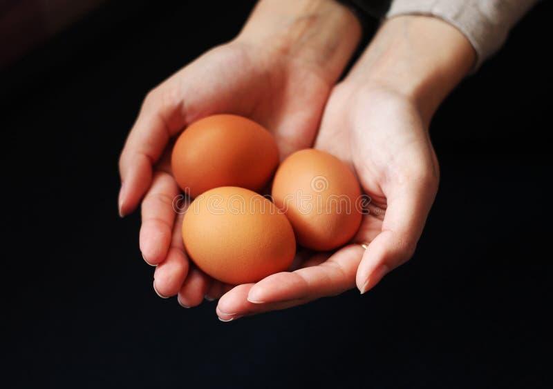 tło barwiący Easter jajek eps8 formata czerwony tulipanu wektor jajka w żeńskich rękach obrazy royalty free