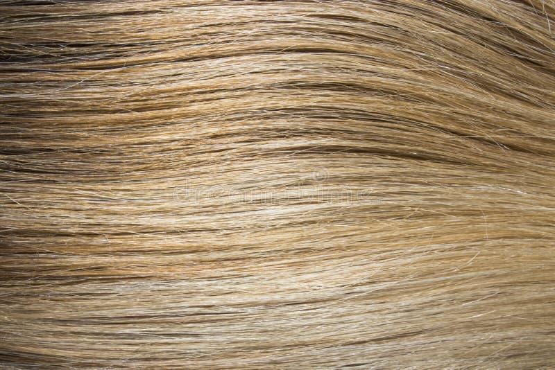Tło barwiony włosy kończy się rozdzielić zdjęcie stock