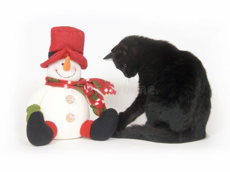tło białe bałwana czarnego kota zdjęcie royalty free