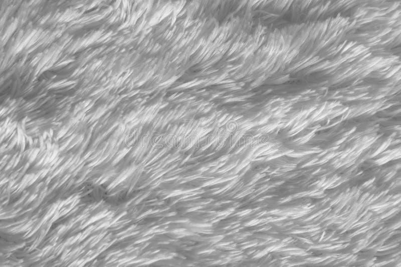 tło białe shag obraz stock