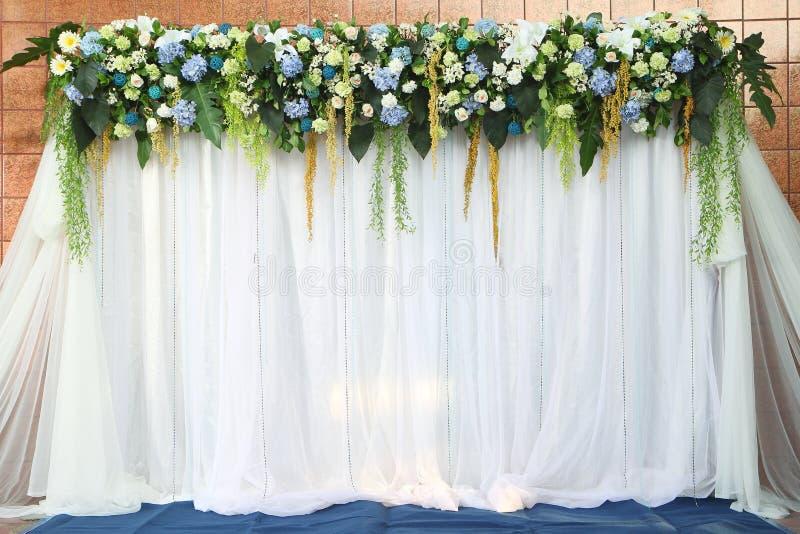 Tło biały i zieleni kwiaty fotografia royalty free
