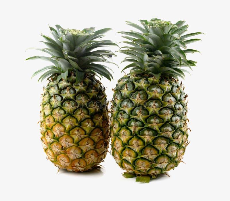 tło biel świeży odosobniony ananasowy zdjęcie royalty free