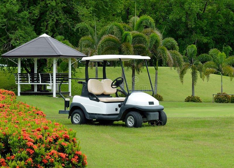 tło biel samochodowy klasyczny kolorowy golfowy obraz royalty free