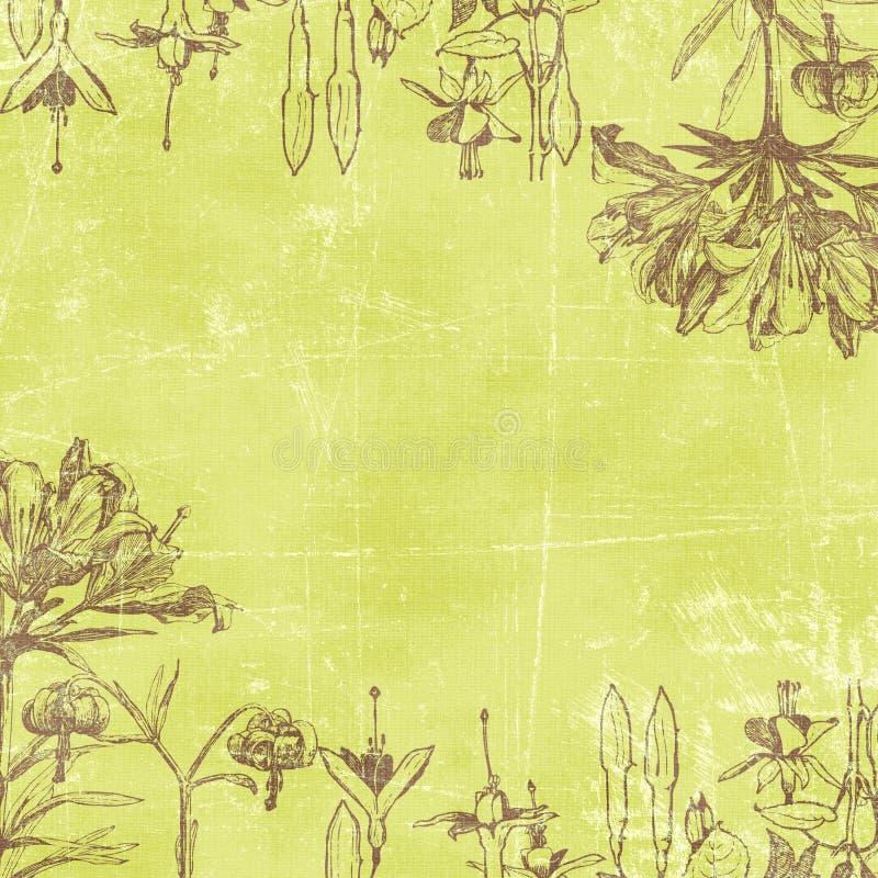 tło botaniczne papier kwiecisty rocznik royalty ilustracja