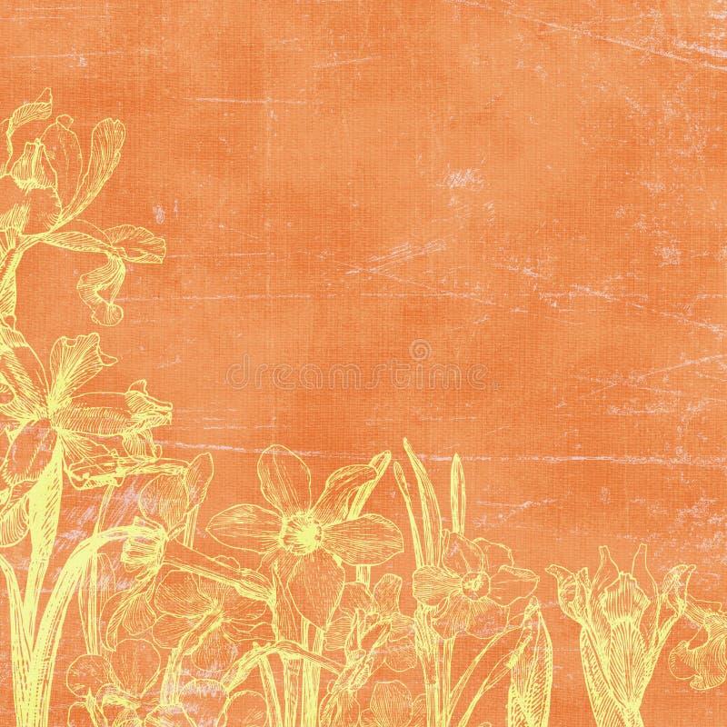 tło botaniczne papier kwiecisty rocznik ilustracji