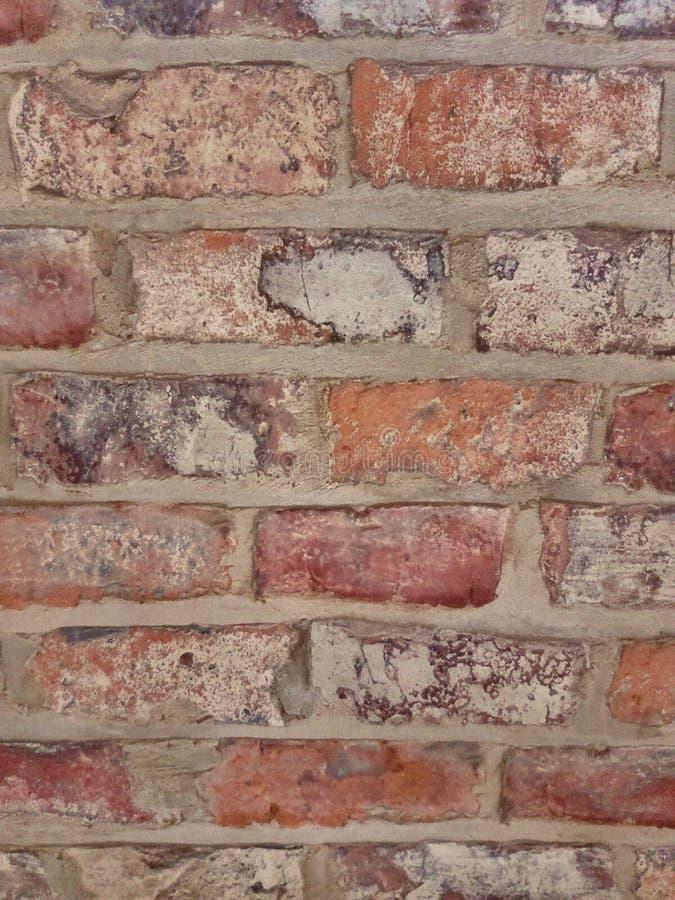 Tło cegieł barwiona ściana zdjęcie stock