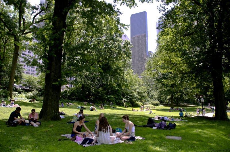 Tło central park obrazy royalty free