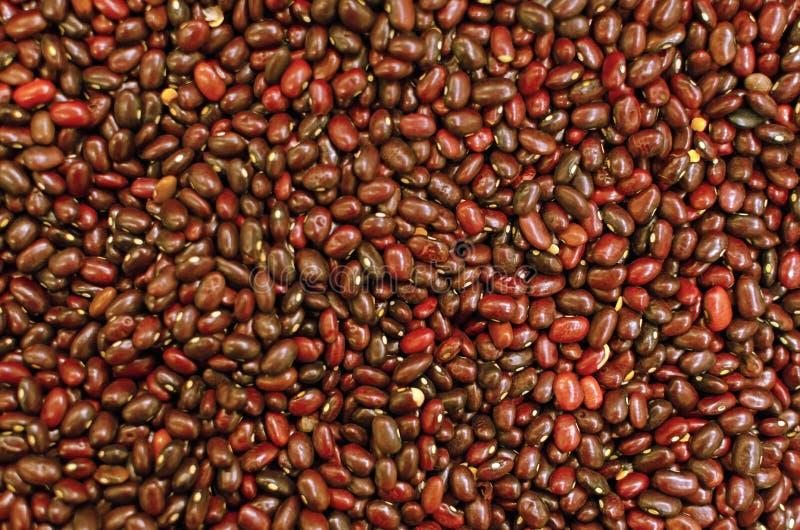 Tło czerwonej fasoli tekstura dieta keto fleksyjny peganizm paleo koncepcja zdrowego żywienia obrazy stock