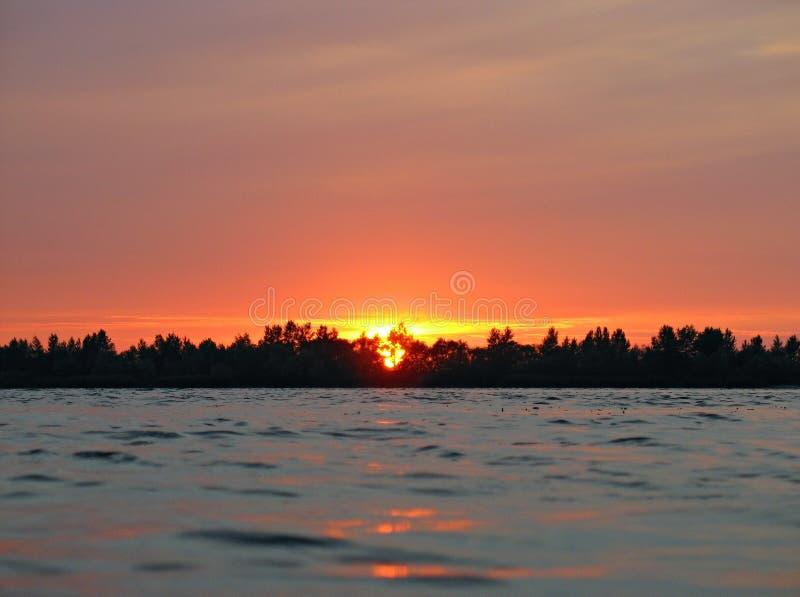 Tło czerwony zmierzch przy wodą z linią horyzontu drzewa fotografia royalty free