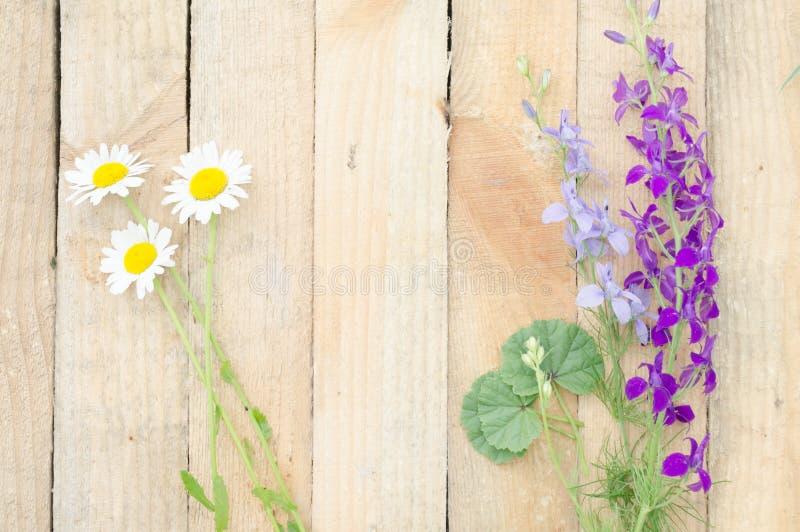 Tło deska z kwiatami obrazy royalty free