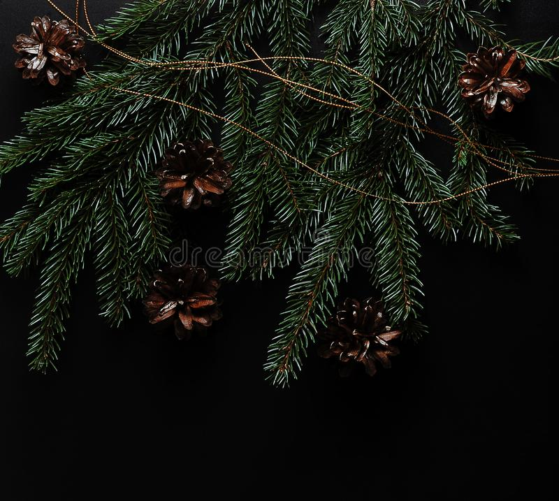 Tło dla nowy rok powitań gałąź, rożki i sno -, zdjęcia royalty free