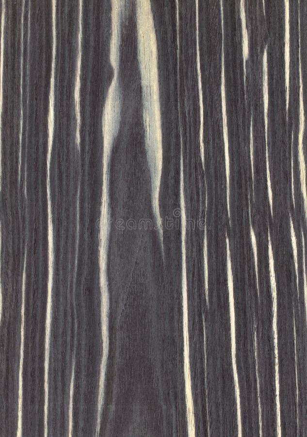 Tło drewnianej tekstury drewno ebony fotografia royalty free