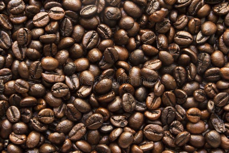 tło fasoli piękną kawową kuchni powiązana konsystencja zdjęcia stock