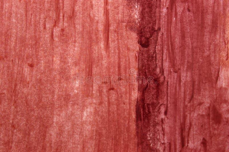 Tło gradientu próbek lipasków Nude fotografia stock