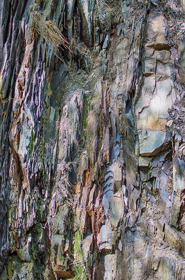 Tło kamienne góry w na wolnym powietrzu w Carpath zdjęcia royalty free