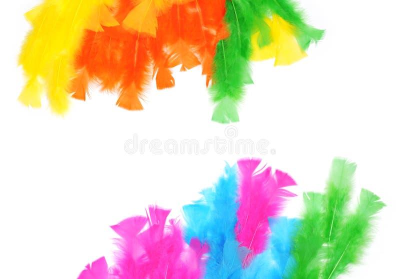 Tło kolorowych piór zdjęcie stock