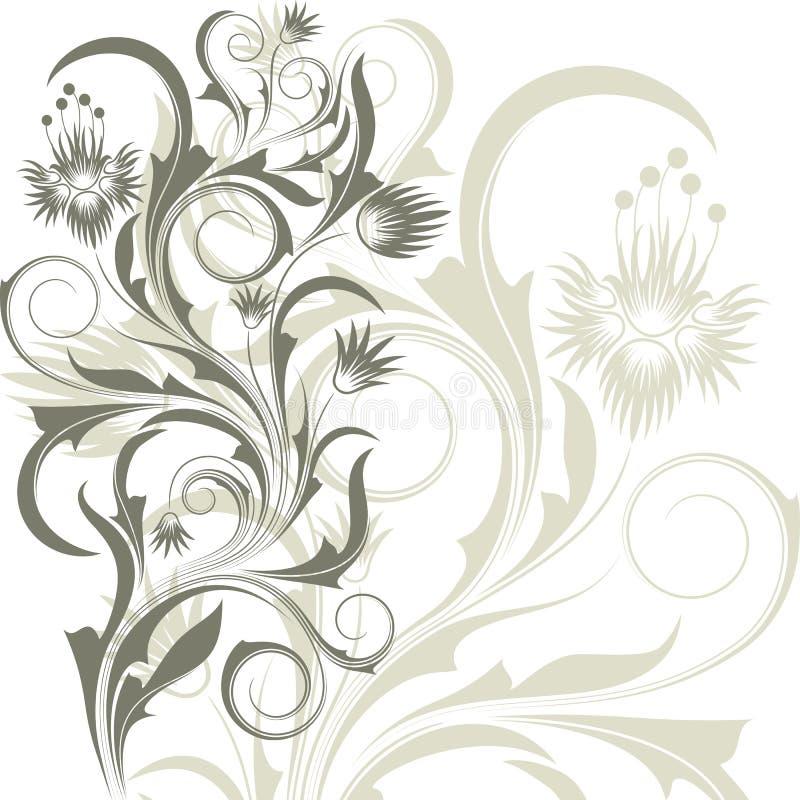 tło kwitnie biel ilustracja wektor