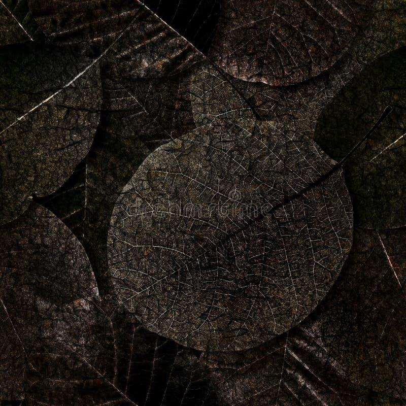 tło leafs przegniły bezszwowy zdjęcie stock