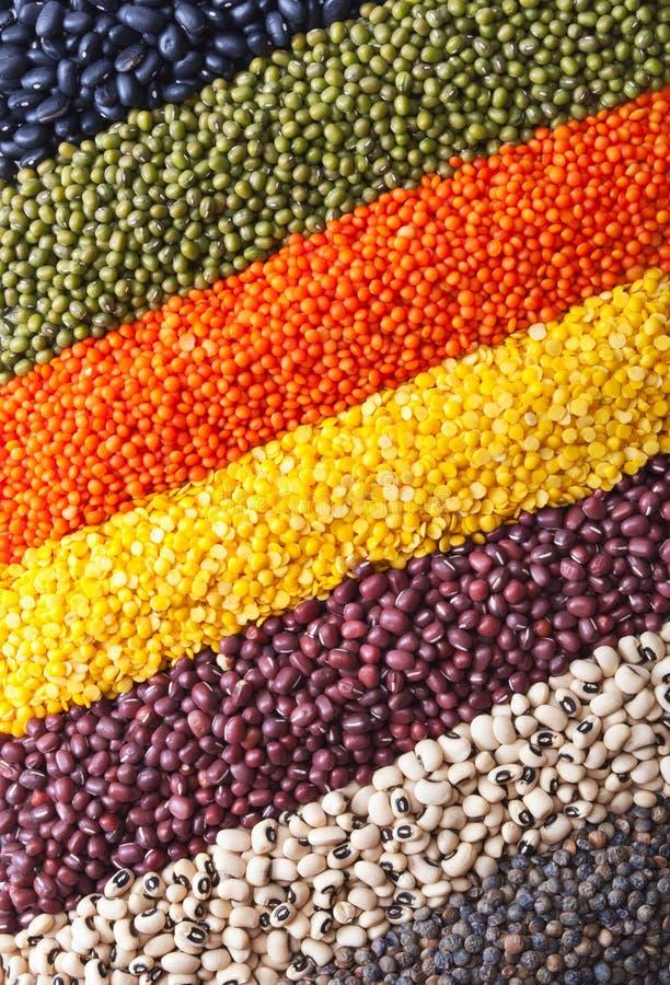 tło legumes obrazy stock