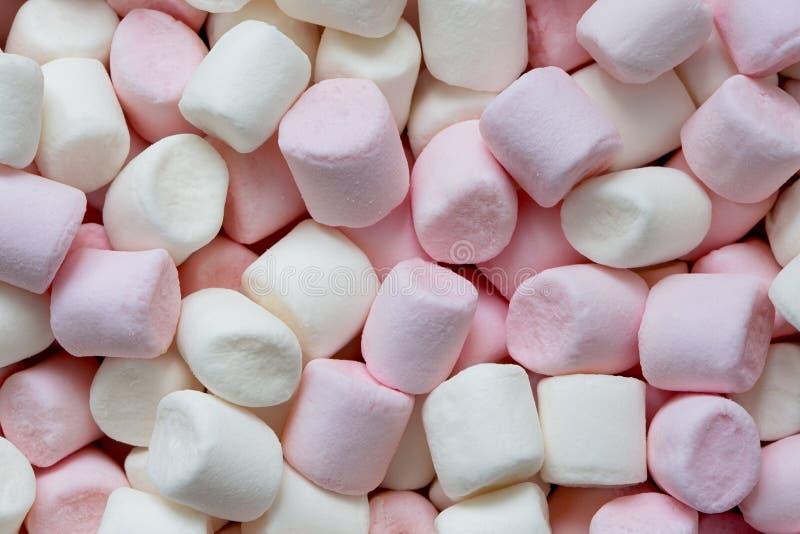 Tło menchii i białych mini marshmallows z góry fotografia stock