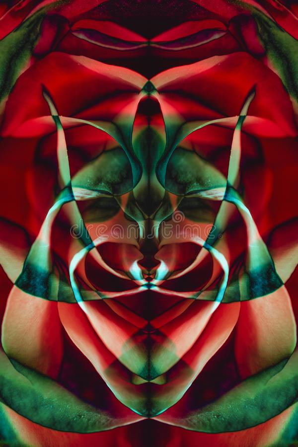 Tło od kolor palety różani płatki i odbicia ilustracji
