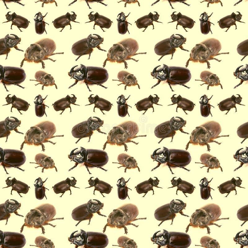 Tło ogromna liczba nosorożec ścigi sztuki pi?kno chmurnieje kola?u nieba kobiety potomstwa wz?r obrazy royalty free