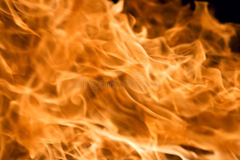 tło pożarniczy doskonalić obraz royalty free