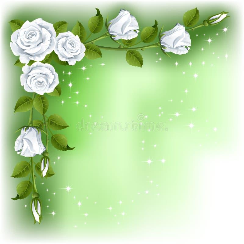tło róże royalty ilustracja