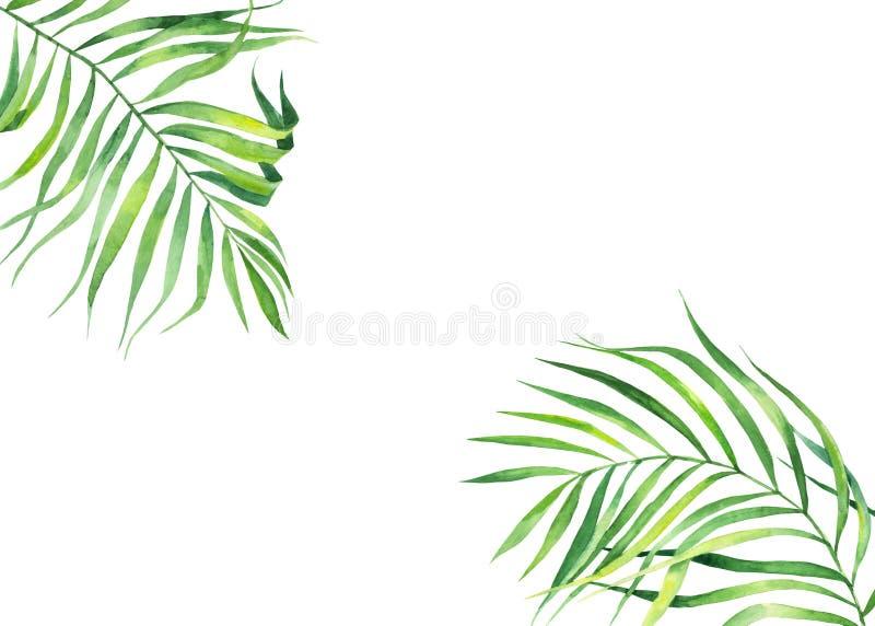 Tło rama w akwarela stylu Egzotyczni koks liście Naturalny druk Jaskrawy - zielona tropikalna rama dla kartek z pozdrowieniami, s ilustracja wektor