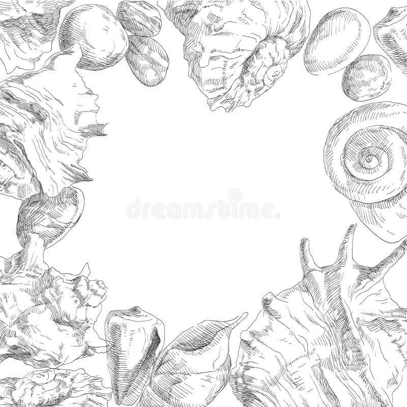 tło seashells ramowi dobrzy royalty ilustracja