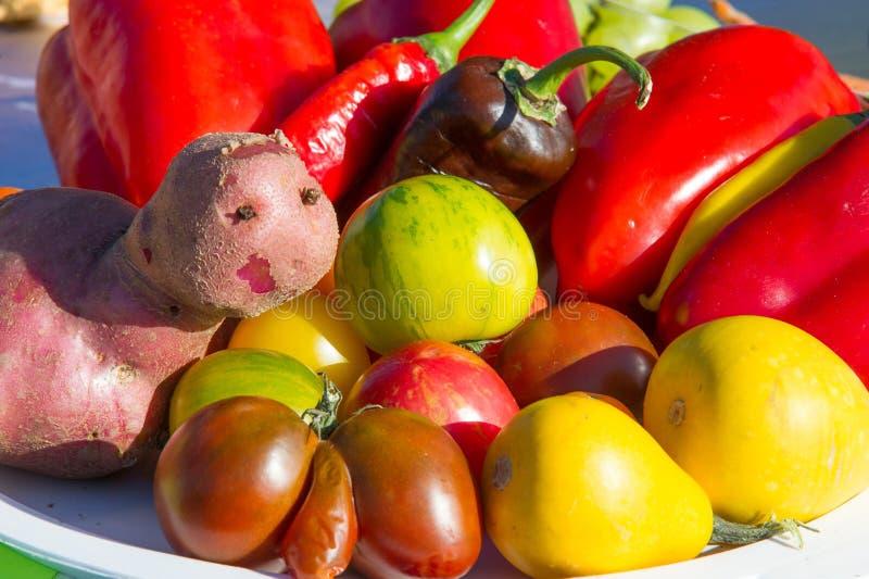 tło szczegółów tekstury okno stary drewniane Wciąż życie warzywa, pomidoru pieprzowy pota ilustracji