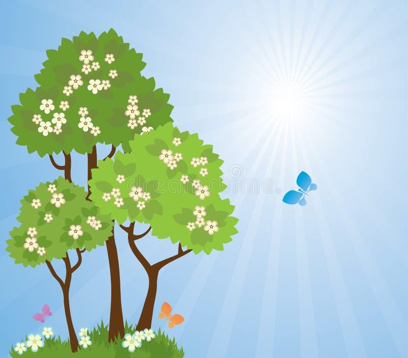 tło target283_0_ jaskrawy idyllicznych krajobrazowych wiosna słońca drzewa royalty ilustracja