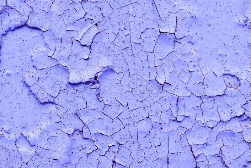 Tło tekstura barwił purpury ścianę w starej krakingowej farbie zdjęcie royalty free