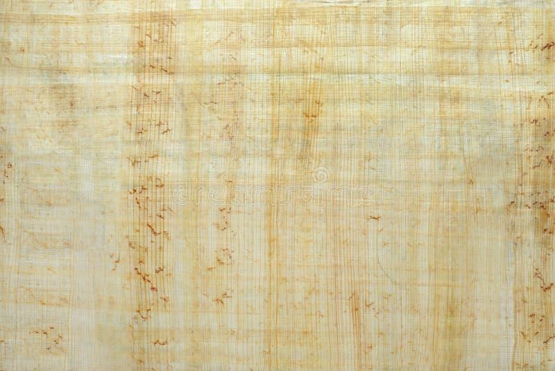 Tło, tekstura: powierzchnia naturalny Egipski papirus zdjęcie royalty free