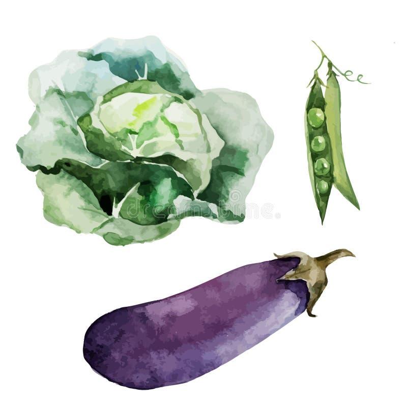 Tło tekstury korzeniowych warzyw weganinu tapetowy jarosz ilustracja wektor