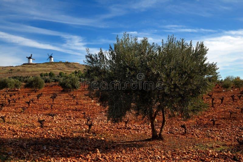 tło wiatraczki krajobrazowi hiszpańscy zdjęcie stock