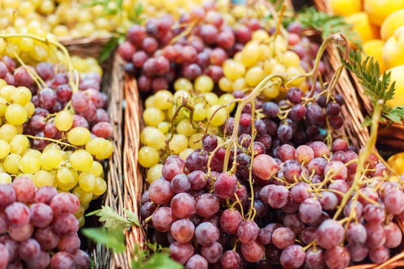 tło winogron kształtu lfloral wektora Organicznie Dojrzały czerwieni i białego winogrono przy rynkiem fotografia royalty free