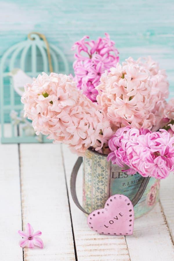 Tło z świeżych kwiatów hiacyntami zdjęcia royalty free