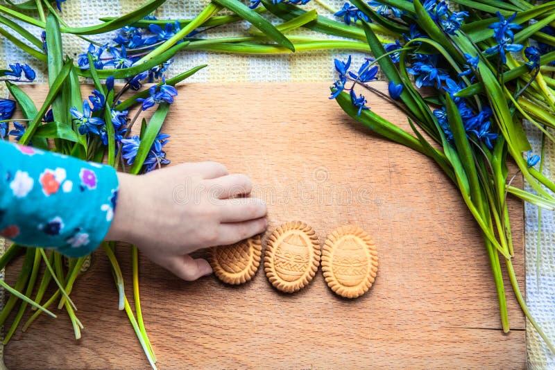 Tło z ciastkami kształt Wielkanocni jajka w błękitnych śnieżyczkach na drewnianej ciapanie deski i dziecka ręce bierze ciastko obrazy royalty free