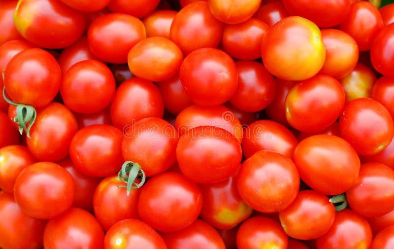 Tło Z Ekologicznymi Czereśniowymi Pomidorami Obraz Royalty Free