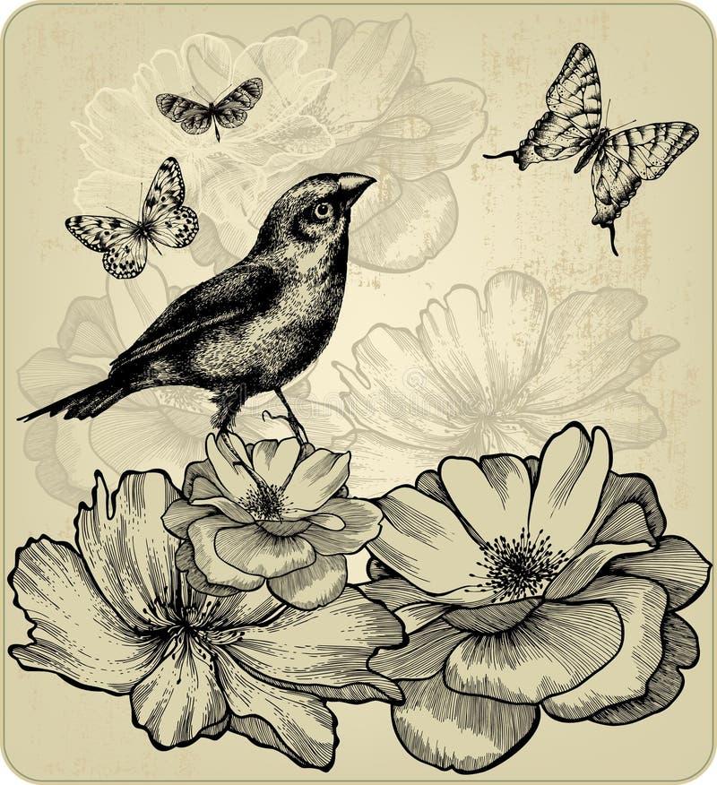 Tło z kwitnącymi różami, ptaki, motyle royalty ilustracja