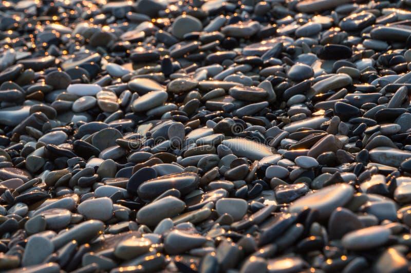 Tło z mokrymi błyszczącymi kamieniami na plaży fotografia stock