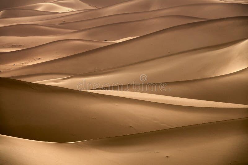 Tło z piaskowatymi diunami w pustyni fotografia royalty free