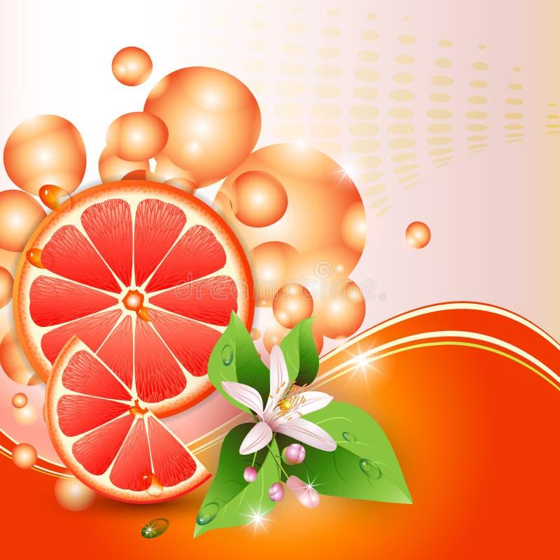 Tło z soczystymi plasterkami grapefruit royalty ilustracja